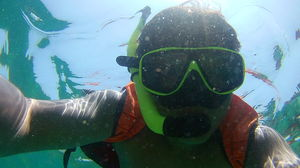 Snorkeling at Phi Phi Islands, Krabi, Thailand