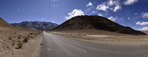 Backpacking in Ladakh : My encounter with killer buffaloes, rats and flirty shopkeepers