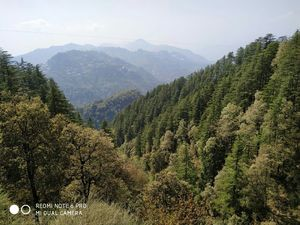 Haridwar, Rishikesh and Mussoorie in 8 days .