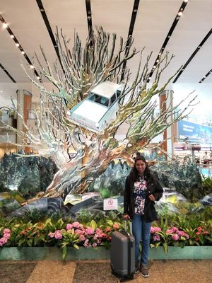10 Things To Do At Changi Airport T4 Terminal - VLOG - Twain Travellers