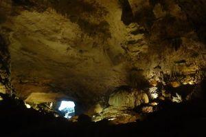 Cavernas del Rio Camuy National Park 1/undefined by Tripoto