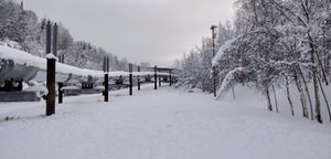 Exploring the Winter Wonderland, Fairbanks!