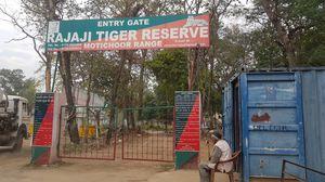 RAJAJI NATIONAL PARK(TIGER RESERVE),HARIDWAR