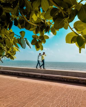 An afternoon in Marine Drive