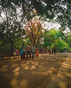 A zoo in Odisha #colourgreen