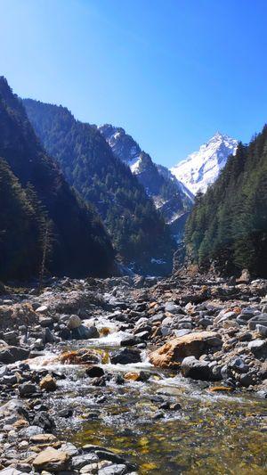 Gangotri: Where Earth Meets Heaven