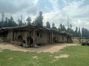 One of the best place to visit in Kashmir - Yousmarg