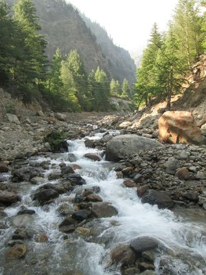 Incredible Nature - Sangla