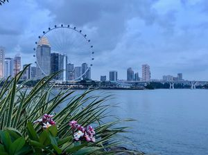 A glimpse of Singapore city from Gardens By Bay
