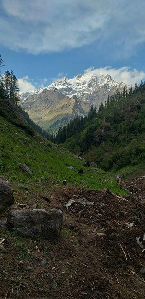 A trek to solitude