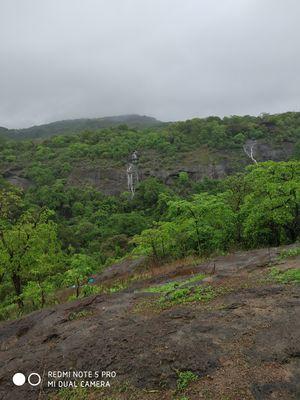 Magic of monsoon of sanjay gandhi national park,mumbai