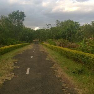 Unexplored place near vellore: Vainu Bappu Observatory,Jawadu hills