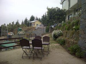 Cool and Calm Holiday at Woodsmoke, Shoghi, Shimla