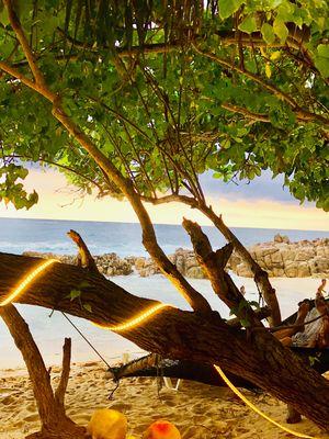The Best Beach in Sri Lanka- Mirissa