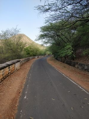 Morning walk/jog/drive to Bala Qila, Alwar (Rajasthan)
