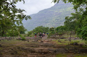Trek To The Mystic Jungles of  Bhimashankar