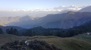 Magnificent view , in middle of forest#worldhighestshivtemple #chopta#halftheheighofEverest