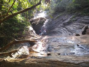 The unexplored path to Kodachadri Hills through mookambika wildlife sanctuary. The way you must go