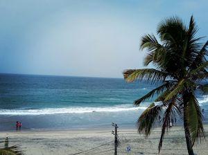 Beach life with coconut...
