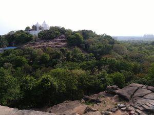 Braving Bhubaneshwar