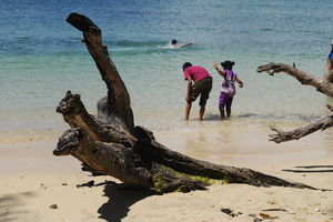 Andaman: Where The Beast Met Beauty