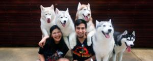 Visiting a Dog Cafe in Bangkok, Thailand!