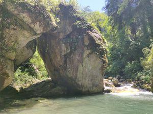 Mini Thailand- A hidden Gem in Jibhi!