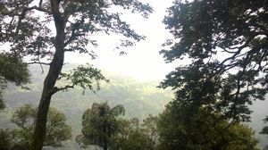 Matheran - The Eco-Sensitive Zone !