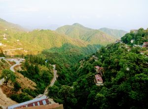 The most beautiful hills in Landour way...
