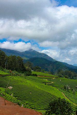 Kerala: During Monsoon