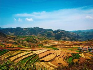travel to organic villege