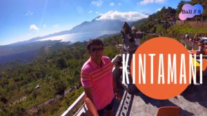 Kintamani & North Bali Tour l Teja Homestay in Ubud