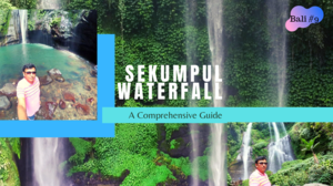 Sekumpul Waterfall l Bali Waterfalls l North Bali Tour l Bali Tour Guide in Hindi