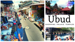 Shopping in Ubud Market l Tirta Empul  l Ubud Palace l Saraswati Temple l Bali Tour Guide in Hindi