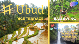 Tegalalang Rice Terrace l Bali Swing l Tegenungan Waterfall l Bali Tour Guide in Hindi