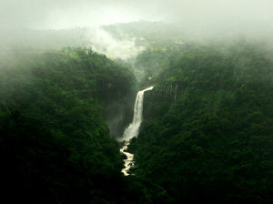 Top 5 Places to Visit Near Pune in Monsoon