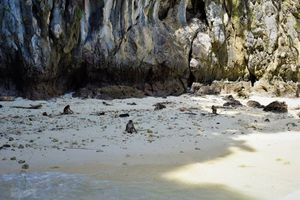 Quick Guide to Phi Phi Islands