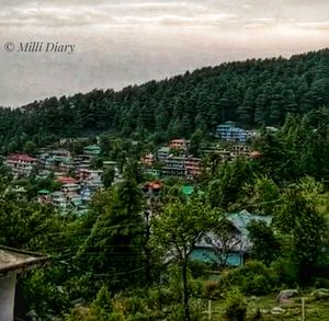 Hotel on Non-motorable roads! Welcome to the serenity of McLeodganj!