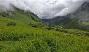 The amazing Landscapes in Valley of Flowers