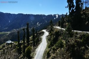 5 Experiences from our trip to Khajjiar