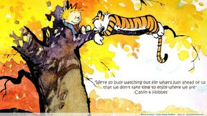 11 Calvin & Hobbes Comics That'll Make You Want to Get Out and EXPLORE