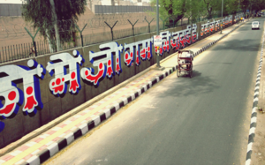 India's Largest Mural Is On Tihar Jail's Boundary Wall