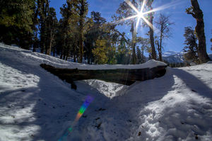 Here's Everything You Need to Know About The Snow Trek to Kedarkantha