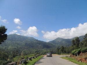Kerala Diaries - Munnar