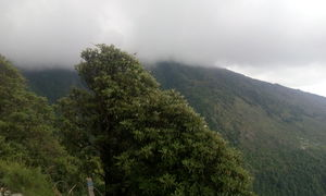 Triund-in the lap of nature