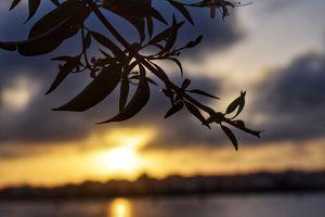 Sunrise @ BTM Lake - Wonderful Scenes!