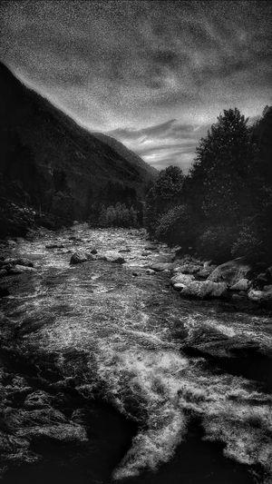 Nature In Black/White