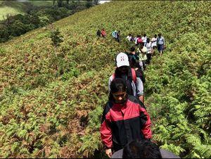 1 day trip to Kudremukh (trek 2018)- when I started travelling