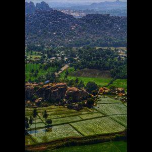 Gloriously green hampi #Hampipictures #IsSummerBaharNikal