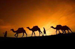 An evening in the desert of Dubai